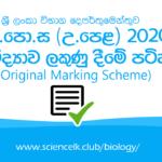 2020 a/l biology