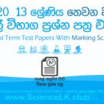 2020 grade 13 3rd term test